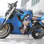 motorcycle wrap 1